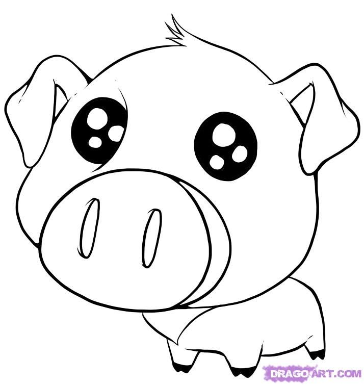 猪 简笔画版