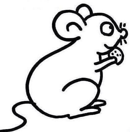 黑白简笔画-老鼠
