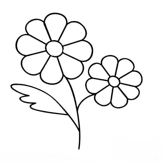 花卉-简笔画篇