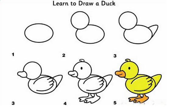 鸭子-简笔画版