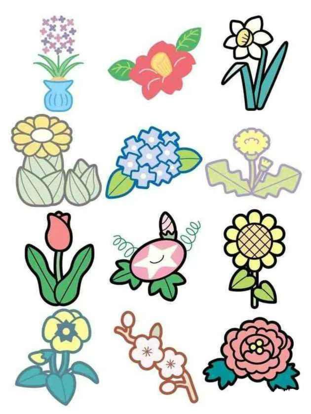 彩色简笔画-花卉