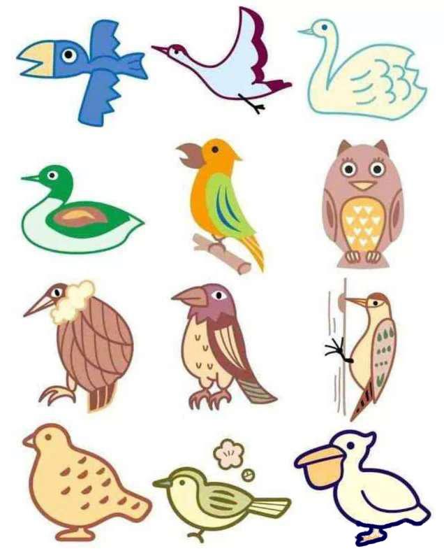 彩色简笔画-鱼,鸟