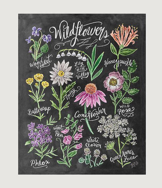 华德福教育理念对各位老师来说并不陌生。这套源自德国的教育理念兼顾儿童身、心、灵的整体发展,教育孩子在植物身上理解生命,在动物身上理解情感,非常值得我们借鉴。 华德福学校的特色之一是,几乎每个教室都会开辟一块小黑板,上面画有一幅属于自己的特色粉笔画!这些画由老师们做主力,孩子们协助完成。粉笔画独有的亲和力让教室瞬间变得平和、幸福,孩子们得以放松身心,近距离接触美。 就像这样:    如此诱人的粉笔画,是不是应该给我们的幼儿园也来上一打!粉笔画绝对是幼儿教师的必备技能,每个呱呱叫的幼师都能画得一手超棒的粉笔画