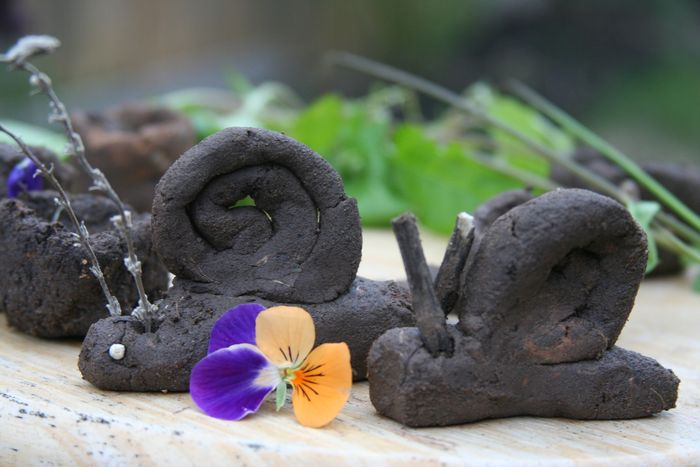 手工制作泥巴动物
