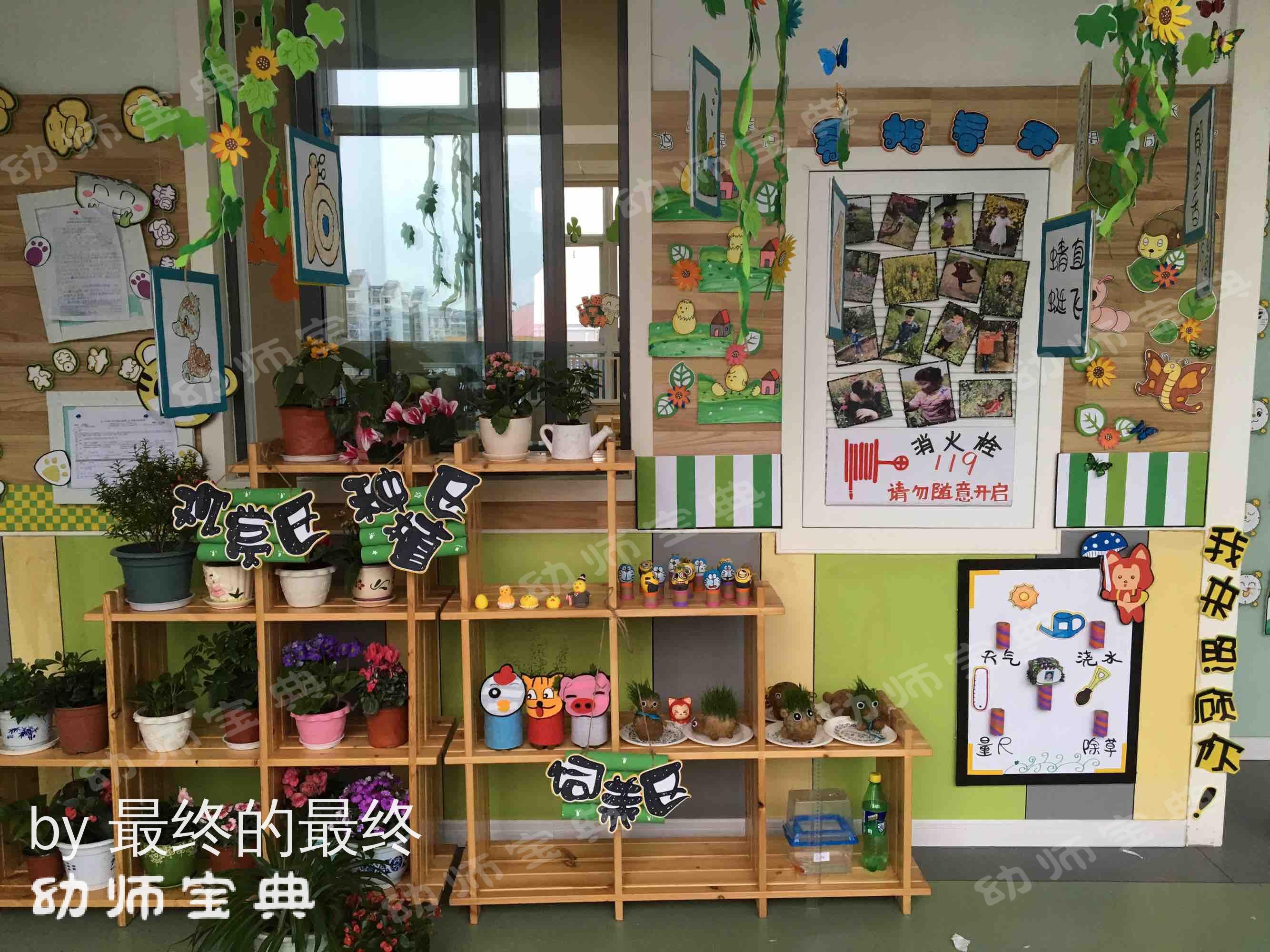 自然角   一起去幼儿园的植物角寻找春天吧!