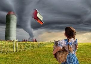 遭遇龙卷风,我们要怎么办?
