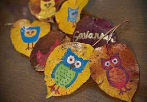 秋天来了,让我们一起捡树叶吧