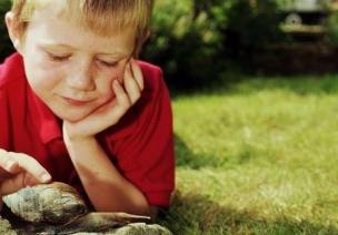 如何对幼儿进行德育教育