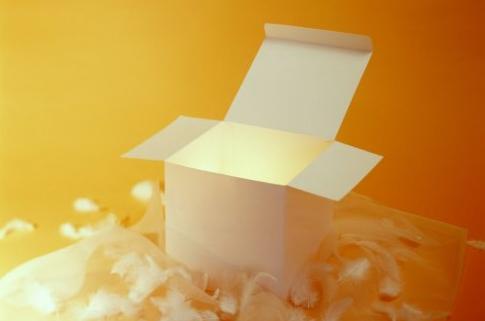 小班半日活动计划——有趣的盒子
