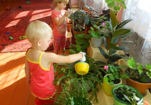 学前班教学活动计划:窗台上的植物园