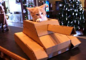 怎样用大纸箱做一辆霸气坦克