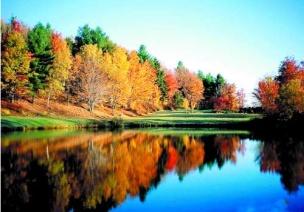 主题活动—我爱秋天 活动八
