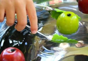 精细运动训练:漂流的苹果