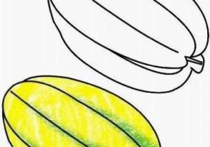 水果的卡通画