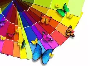 幼儿如何学习区别颜色、形状和大小