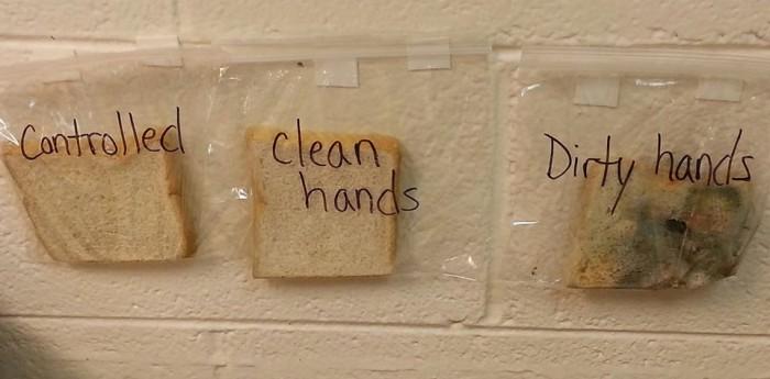 孩子不爱洗手,就给他看这个!震撼+实用