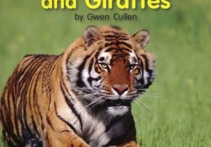 【英文绘本】老虎,大象和长颈鹿