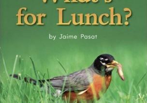 【英文绘本】鸟儿的午餐