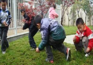主题活动-我爱幼儿园(活动十二)