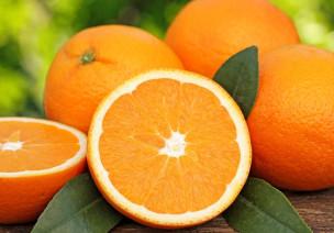 柑橘类水果儿歌