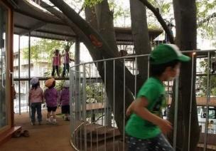 日本幼儿园如何培养孩子,值得中国人看看