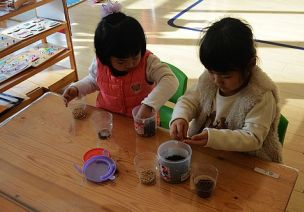 【数学区域材料投放】分豆豆