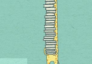 蒙台梭利 | 智慧从不是来自于思考,而是专注的自然结果