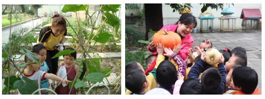 【获奖论文】节能减排,创建绿色生态特色幼儿园