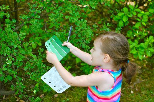 自然探索课程 | 带孩子展开冒险、获取新知、体验惊奇吧!