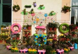 干货 | 幼儿园自然角的创建与思考
