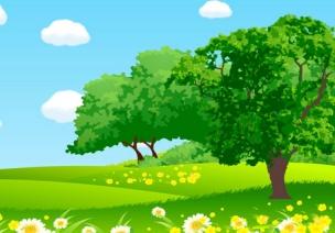 【拜访大树】大班主题活动案例——树朋友