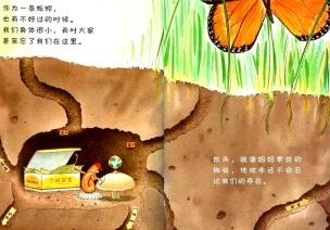 春天的动植物 | 中班科学活动《寻找蚯蚓》(随机课程开展实录)