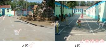 幼儿园户外游戏区设置 | 混龄车区游戏的创设与指导