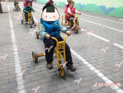 幼儿园户外车区创设及开展,你的幼儿园有了么?