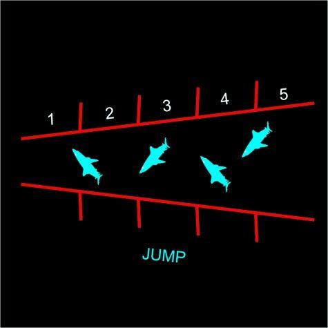 tmf009-shark-jump-e1421332050706