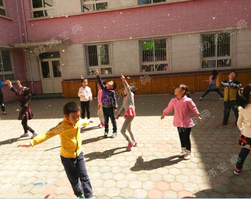 连续性探究活动 | 杨絮飘飘,让孩子与杨絮一起玩耍