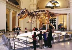 """女儿是怎样爱上参观""""沉闷乏味""""的博物馆的?"""
