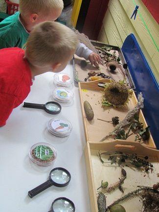玩教具的制作与投放——科学区、益智区