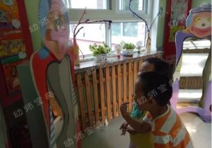 主题教案 | 幼儿园楼道里的哈哈镜引发的系列教学活动