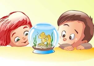 小班观察记录 | 日常篇:自然角的小金鱼