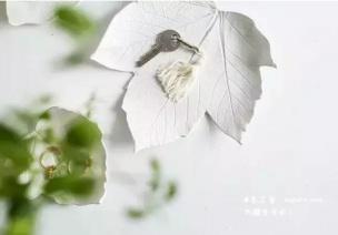 手工 | 樹葉形狀的紙粘土容器(粘土裝飾盤DIY制作教程)