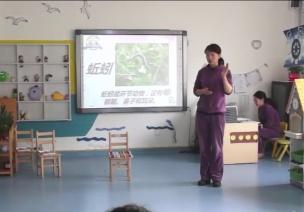 获奖公开课视频 | 大班科学领域科学活动《认识蚯蚓》