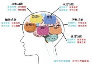 2016AMI北京年��|Jack Yu��冢�完�洵h境中�h字教�W的真�B