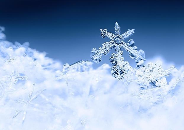 二十四节气 | 大雪:集浪漫与美食与一身