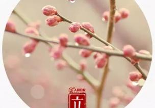 二十四节气 | 立春,天下雷行而育万物