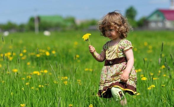 大班春季主题活动 | 科学领域《我的植物宝宝》