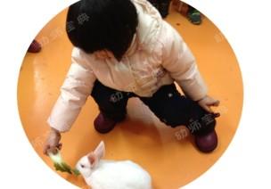 饲养区创设指导 | 让幼儿去感受和了解生命