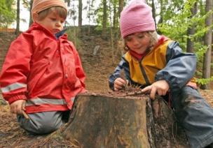 森林幼儿园的自然教育 | 自然教育到底能带给孩子什么?