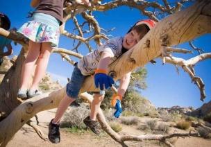 如何让幼儿教育回归自然,我们缺少了什么?