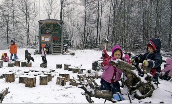 花妞妞,自然教育,幼儿园景观设计